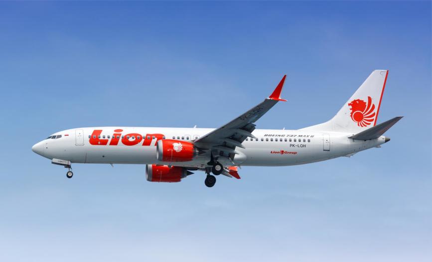 Das Foto zeigt ein Boeing 737 MAX Flugzeug der Lion Air, das am 29.10.2018 abstürzte. Eine Katastrophe als Ergebnis komplexer Driftvorgänge.
